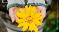 mua-thu-da-lat-vntour.com.vn