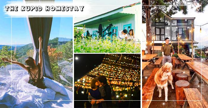 The-Kupid-Homestay-tophomestay.vn