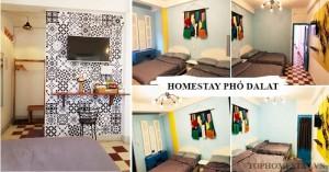 homestay_pho_da_lat_tophomestay