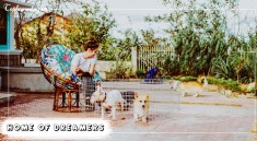 Home-of-Dreamers-tophomestay.vn
